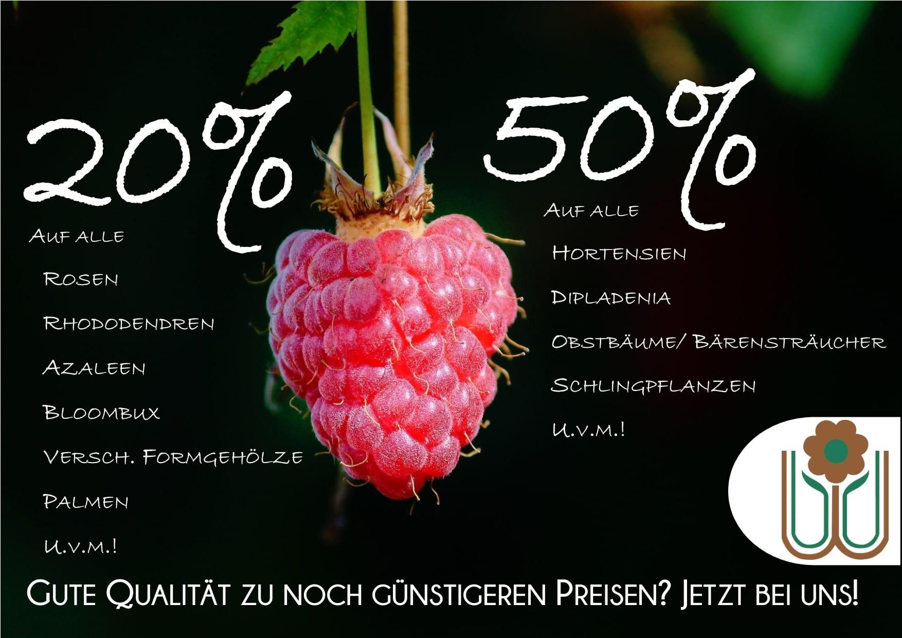 Werbung FB Sommerausverkauf